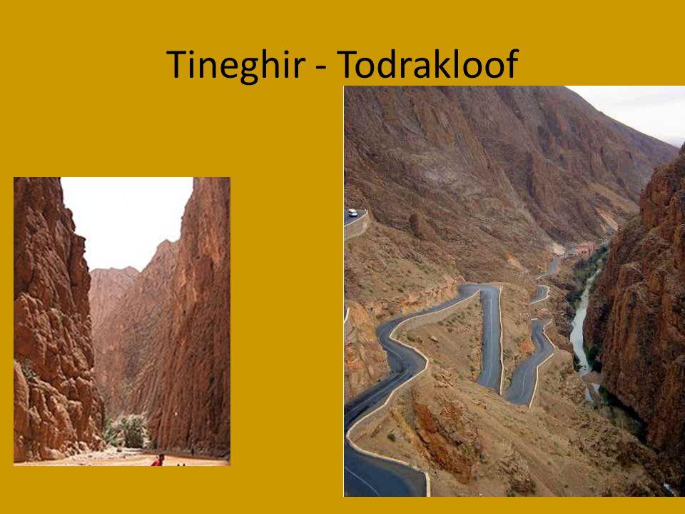 Tineghir - Todrakloof