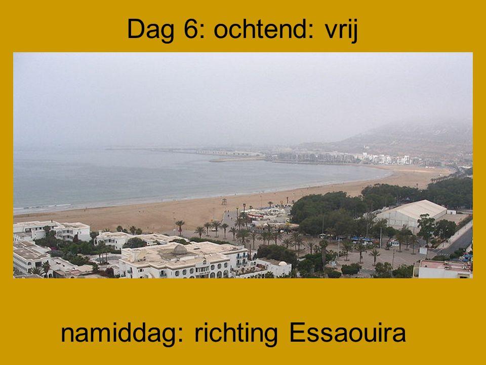 Dag 6: ochtend: vrij namiddag: richting Essaouira