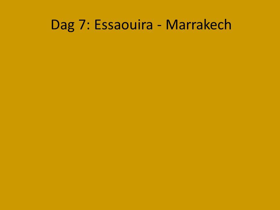 Dag 7: Essaouira - Marrakech