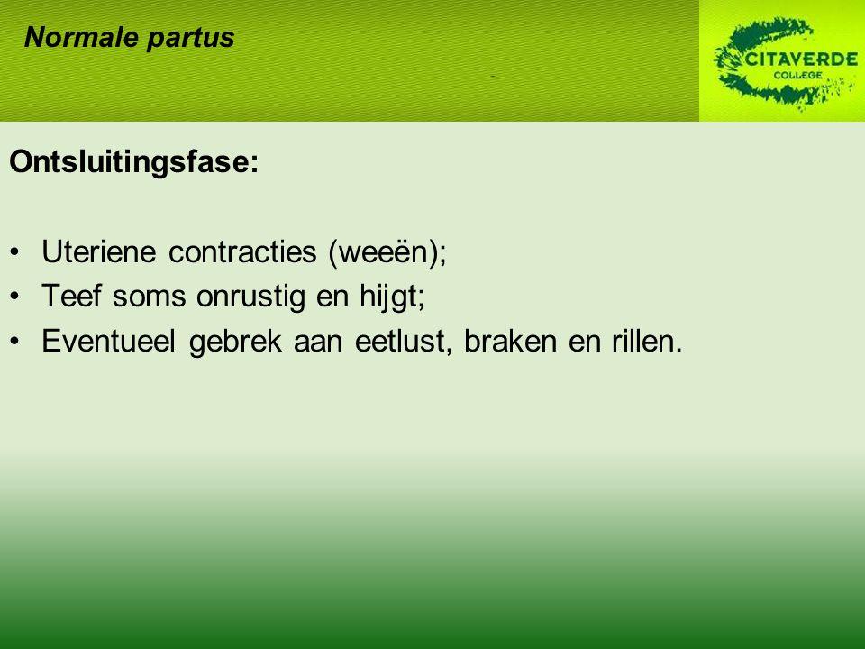 Ontsluitingsfase: Uteriene contracties (weeën); Teef soms onrustig en hijgt; Eventueel gebrek aan eetlust, braken en rillen. Normale partus