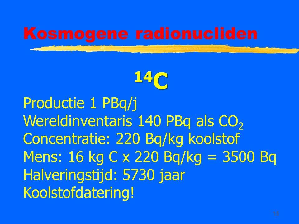15 Kosmogene radionucliden 14 C Productie 1 PBq/j Wereldinventaris 140 PBq als CO 2 Concentratie: 220 Bq/kg koolstof Mens: 16 kg C x 220 Bq/kg = 3500