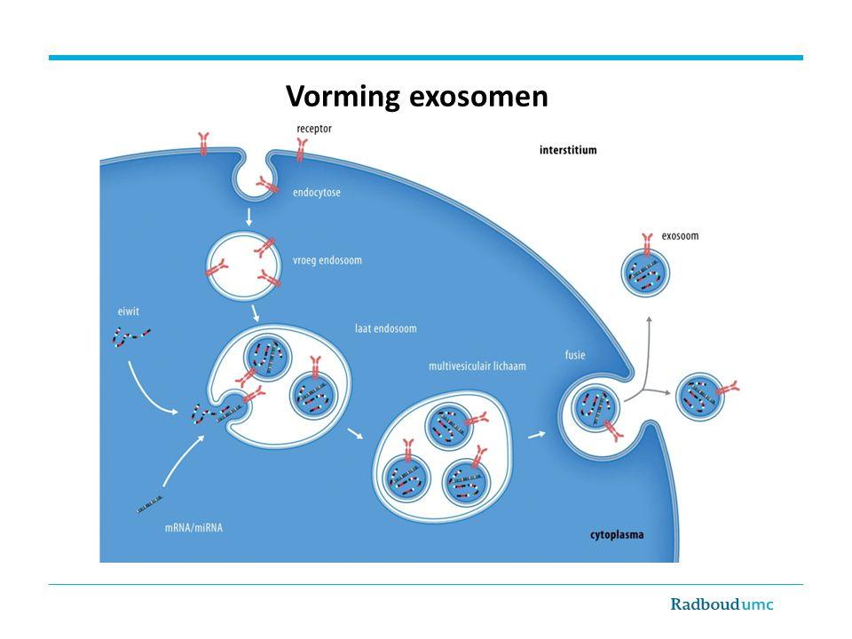 Extracellulaire microvesikels afkomstig van alle delen van het nefron Erdbrügger & Thu JASN 2016;27:12