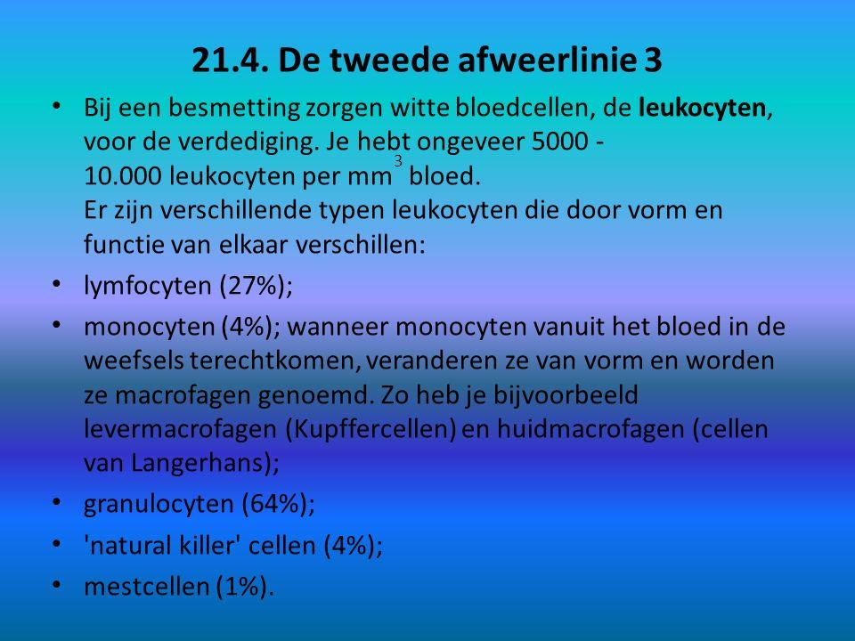 21.4. De tweede afweerlinie 3 Bij een besmetting zorgen witte bloedcellen, de leukocyten, voor de verdediging. Je hebt ongeveer 5000 - 10.000 leukocyt