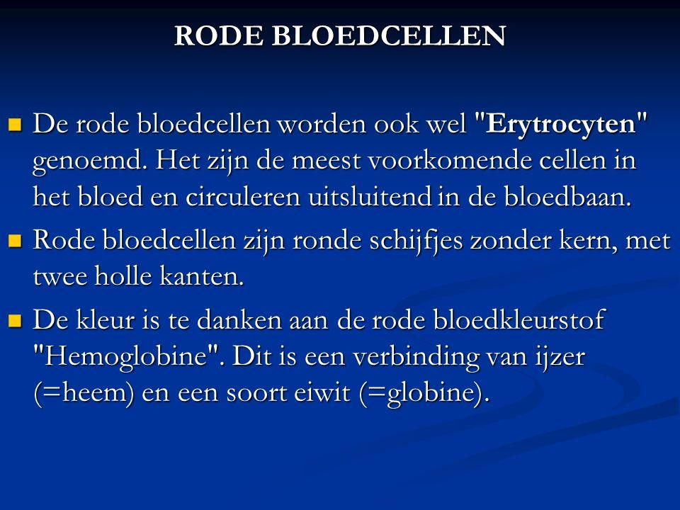 RODE BLOEDCELLEN De rode bloedcellen worden ook wel