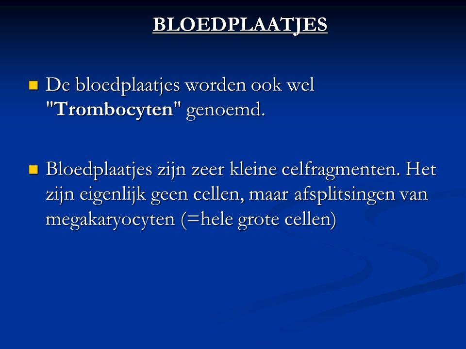 BLOEDPLAATJES De bloedplaatjes worden ook wel