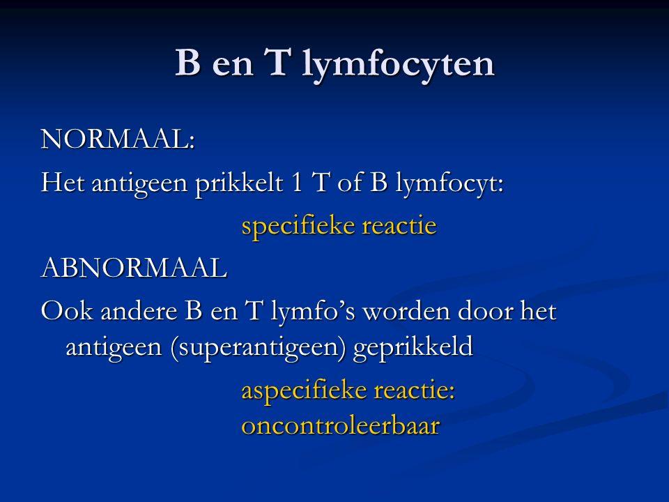 B en T lymfocyten NORMAAL: Het antigeen prikkelt 1 T of B lymfocyt: specifieke reactie ABNORMAAL Ook andere B en T lymfo's worden door het antigeen (superantigeen) geprikkeld aspecifieke reactie: oncontroleerbaar