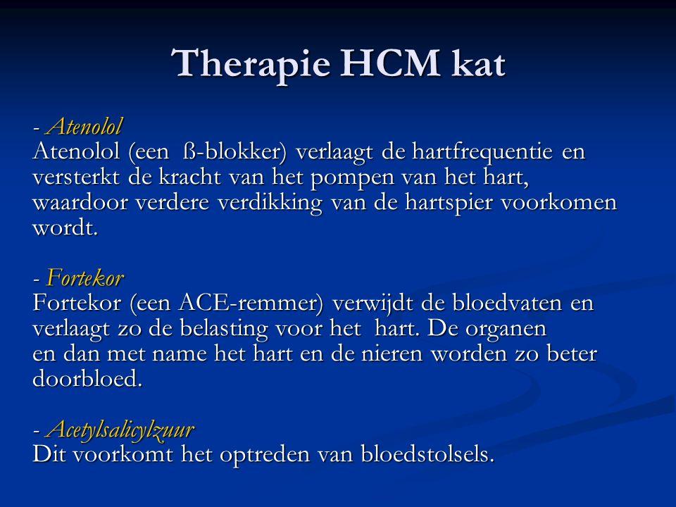 Therapie HCM kat - Atenolol Atenolol (een ß-blokker) verlaagt de hartfrequentie en versterkt de kracht van het pompen van het hart, waardoor verdere v