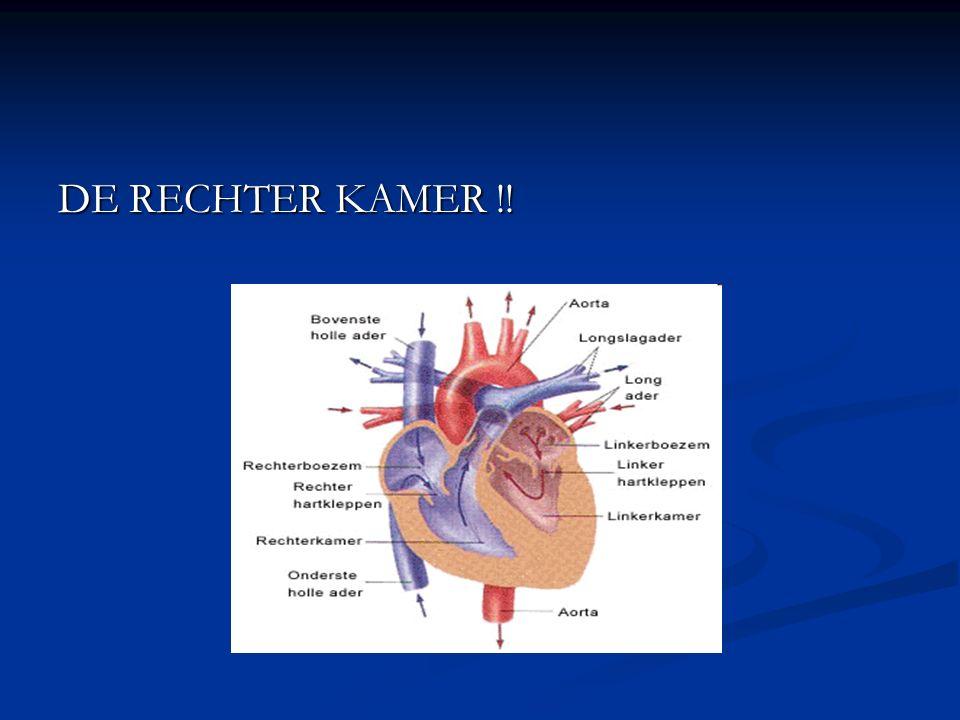 DE RECHTER KAMER !!