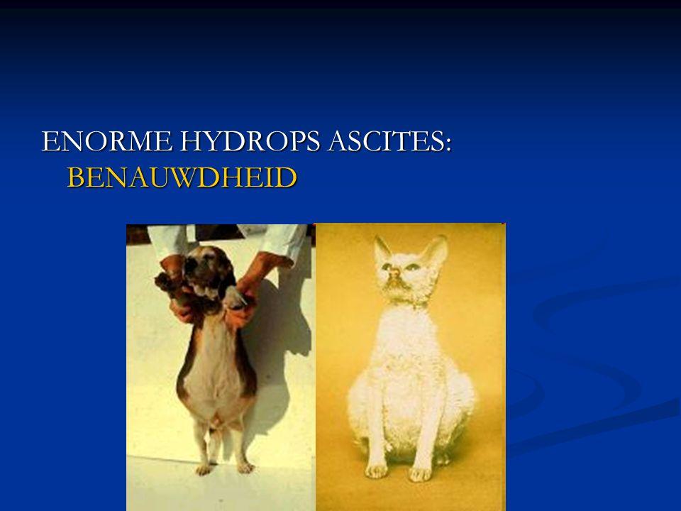 ENORME HYDROPS ASCITES: BENAUWDHEID