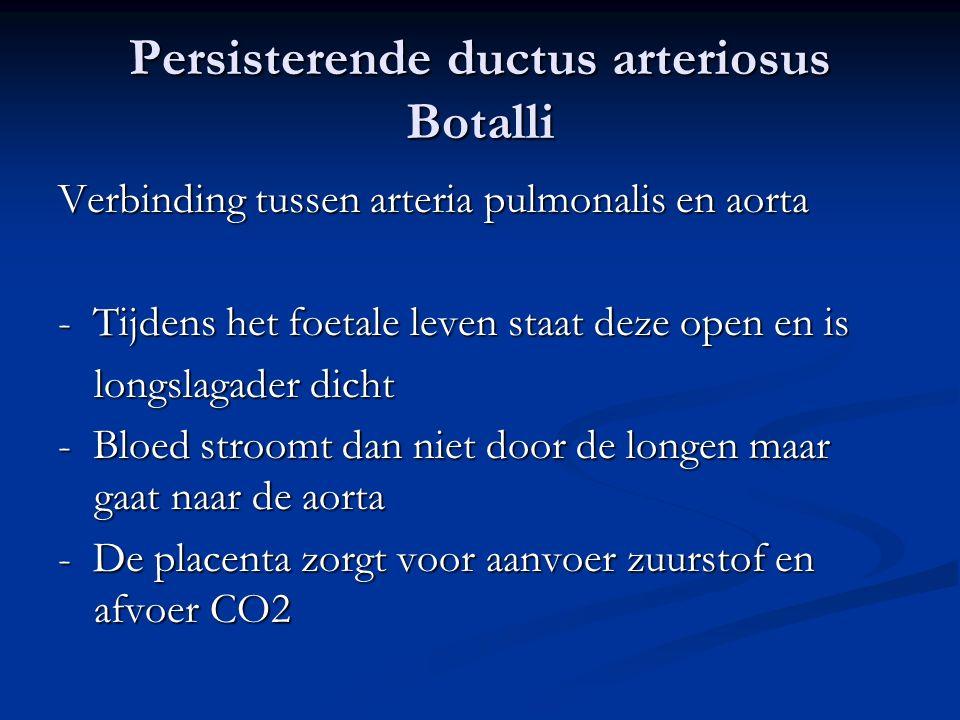 Persisterende ductus arteriosus Botalli Verbinding tussen arteria pulmonalis en aorta - Tijdens het foetale leven staat deze open en is longslagader d