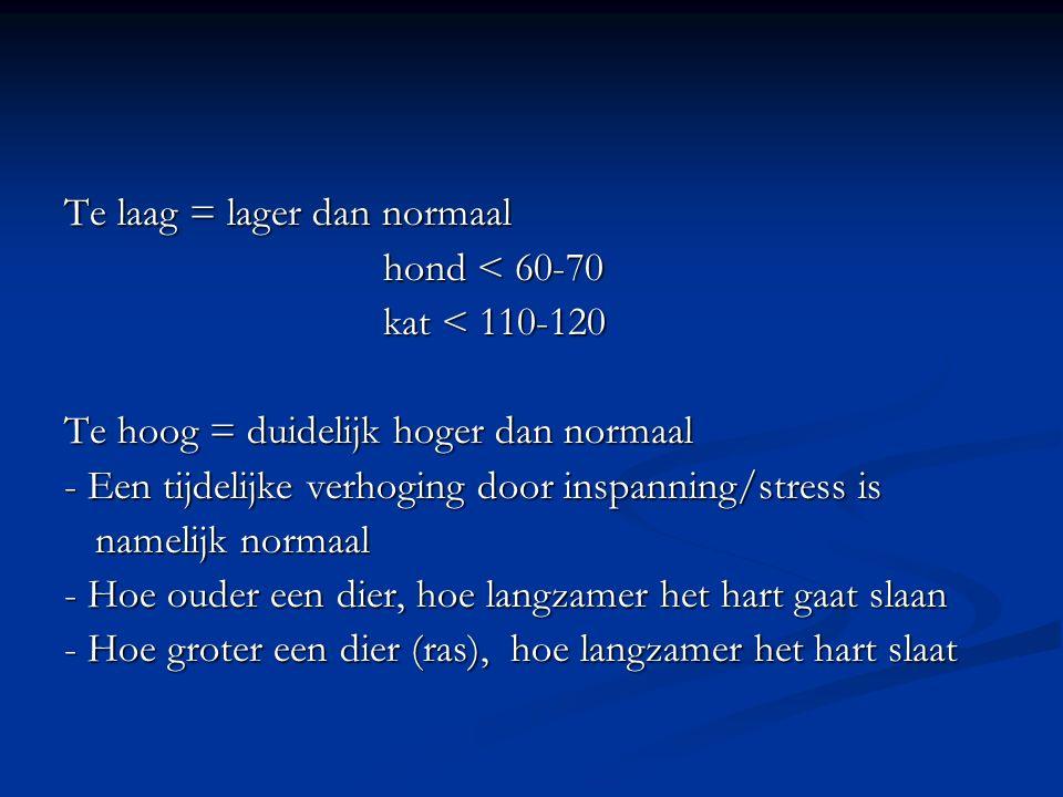 Te laag = lager dan normaal hond < 60-70 kat < 110-120 Te hoog = duidelijk hoger dan normaal - Een tijdelijke verhoging door inspanning/stress is name