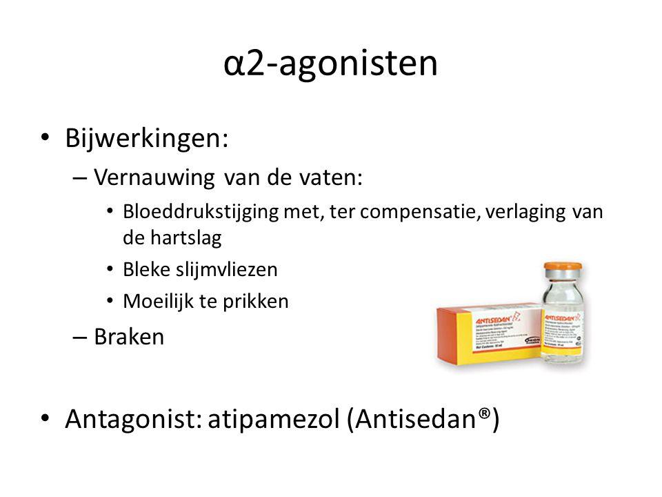 α2-agonisten Bijwerkingen: – Vernauwing van de vaten: Bloeddrukstijging met, ter compensatie, verlaging van de hartslag Bleke slijmvliezen Moeilijk te prikken – Braken Antagonist: atipamezol (Antisedan®)