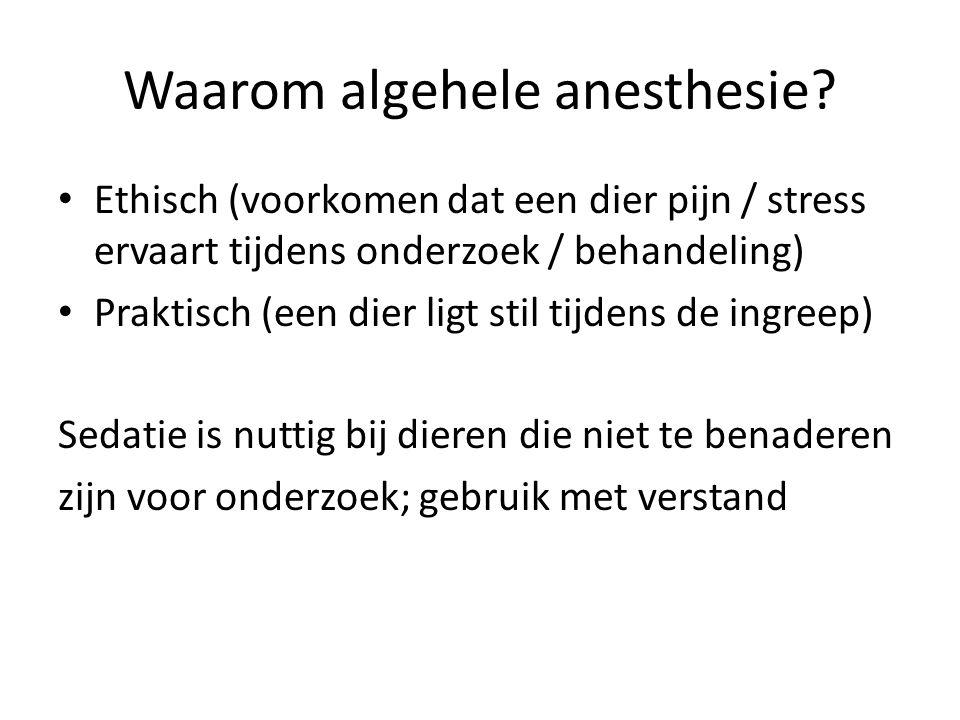 Wel of niet onder anesthesie.Anesthesie blijft een risico.