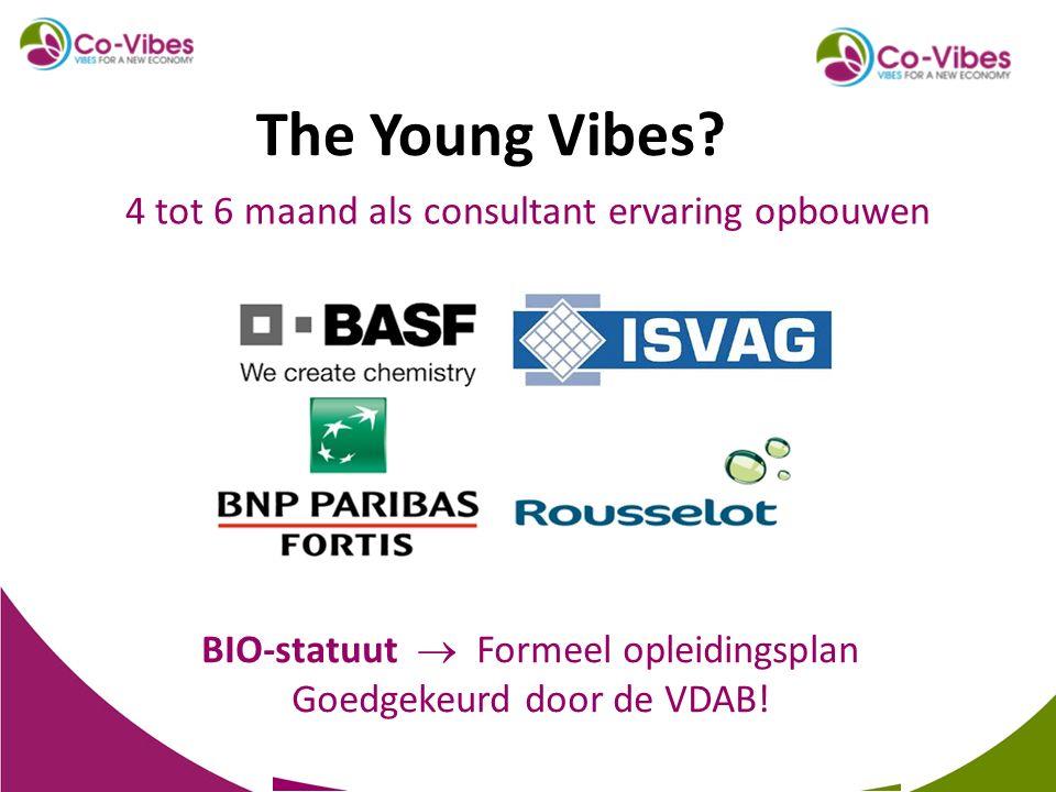 4 tot 6 maand als consultant ervaring opbouwen BIO-statuut  Formeel opleidingsplan Goedgekeurd door de VDAB! The Young Vibes?
