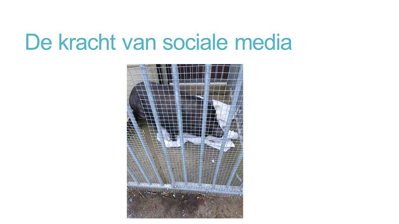 De kracht van sociale media