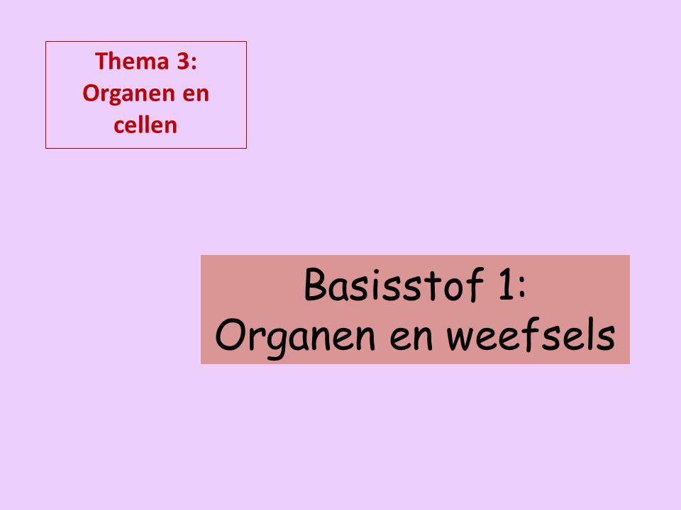 Basisstof 1: Organen en weefsels Thema 3: Organen en cellen
