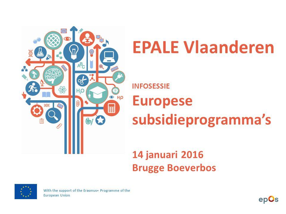 In EPALE vind je een MATERIALENBANK met publicaties, artikelen, gidsen, rapporten en case studies uit heel Europa