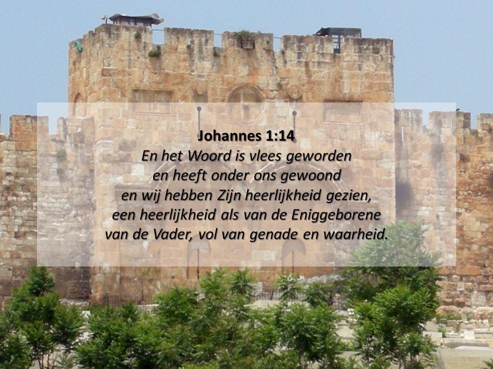 Johannes 1:14 En het Woord is vlees geworden en heeft onder ons gewoond en wij hebben Zijn heerlijkheid gezien, een heerlijkheid als van de Eniggeborene van de Vader, vol van genade en waarheid.