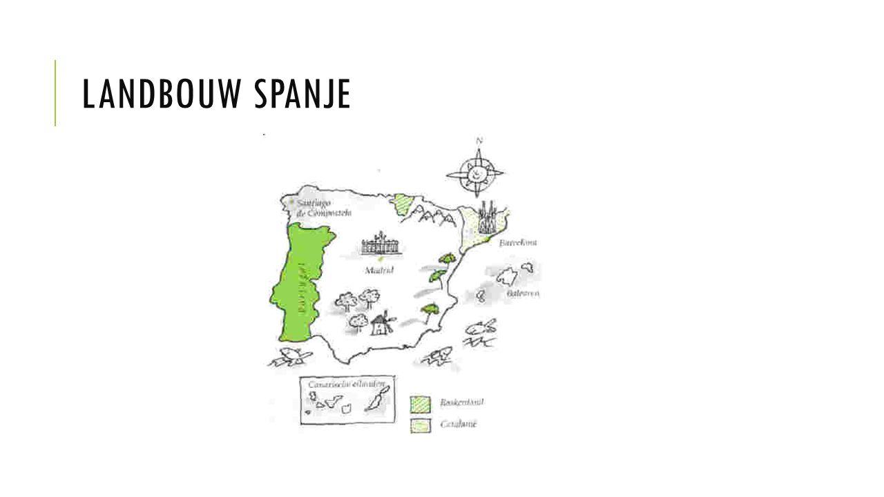 LANDBOUW SPANJE