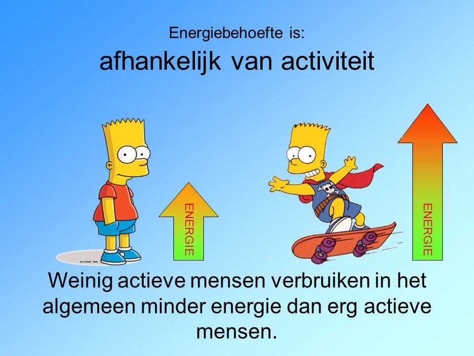Energiebehoefte is: afhankelijk van activiteit Weinig actieve mensen verbruiken in het algemeen minder energie dan erg actieve mensen.
