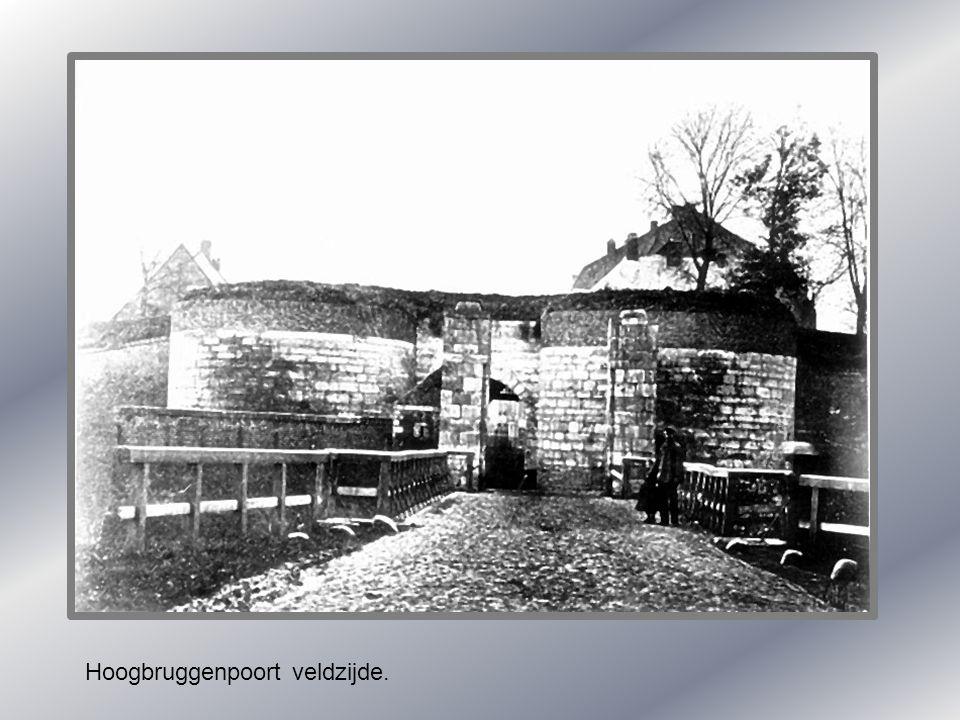 Paarden wassen in de maas in wijck. 1900.