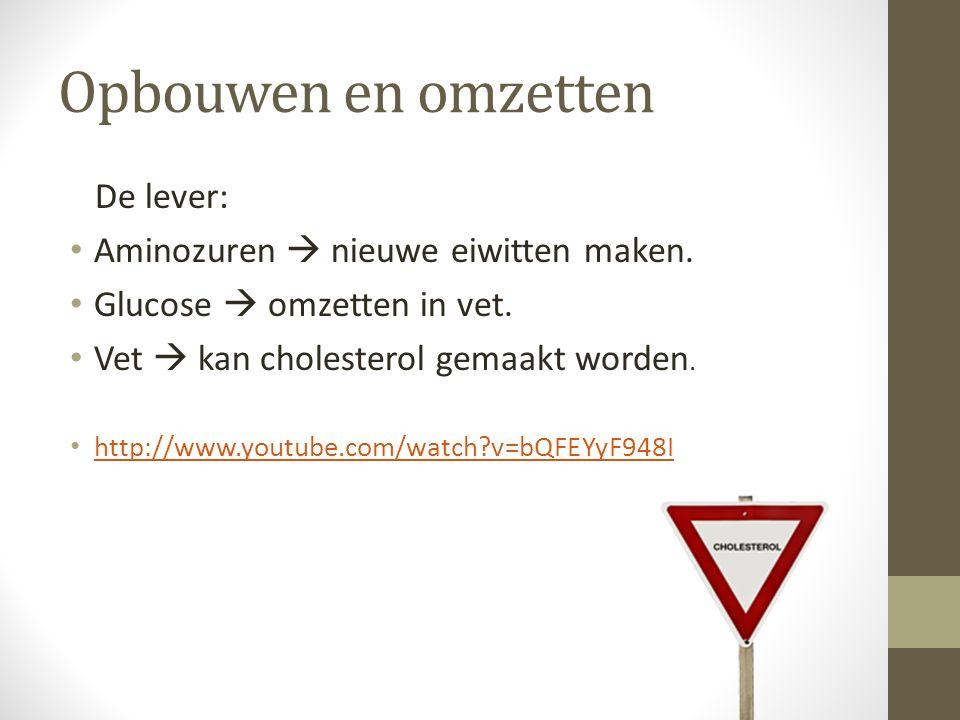 Opbouwen en omzetten De lever: Aminozuren  nieuwe eiwitten maken. Glucose  omzetten in vet. Vet  kan cholesterol gemaakt worden. http://www.youtube