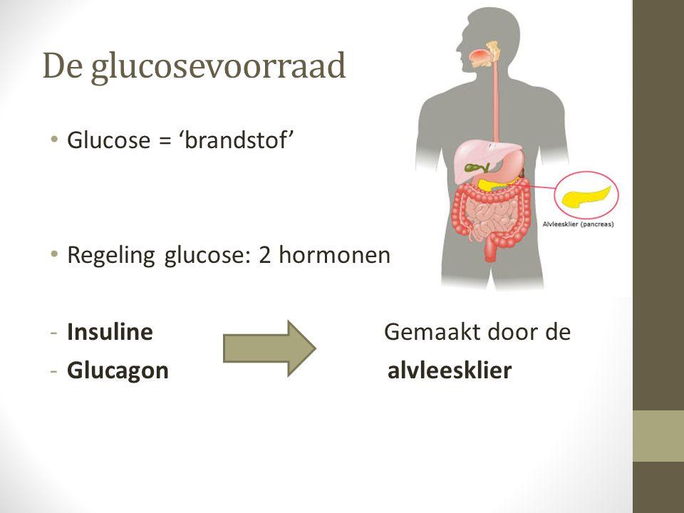De glucosevoorraad Glucose = 'brandstof' Regeling glucose: 2 hormonen -Insuline Gemaakt door de -Glucagon alvleesklier