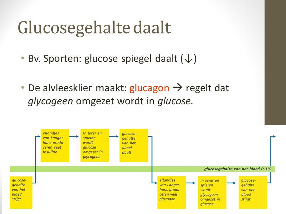 Glucosegehalte daalt Bv. Sporten: glucose spiegel daalt (↓) De alvleesklier maakt: glucagon  regelt dat glycogeen omgezet wordt in glucose.