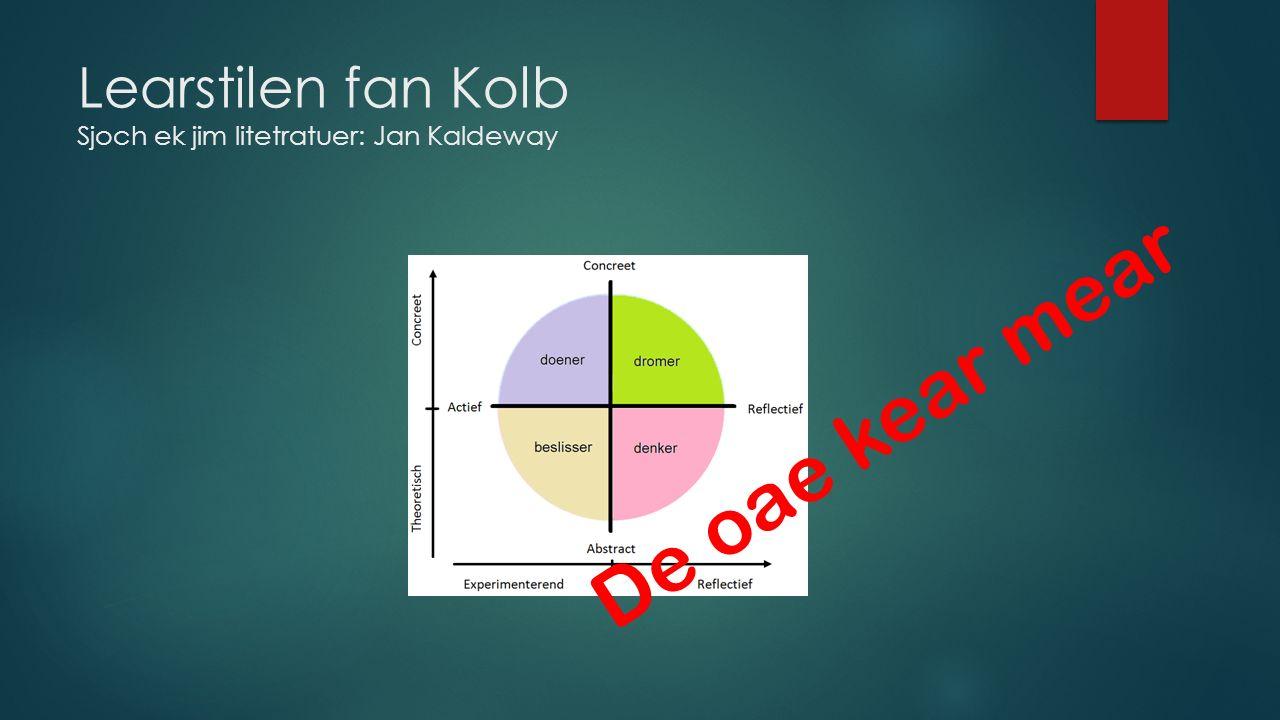 Learstilen fan Kolb Sjoch ek jim litetratuer: Jan Kaldeway De oae kear mear