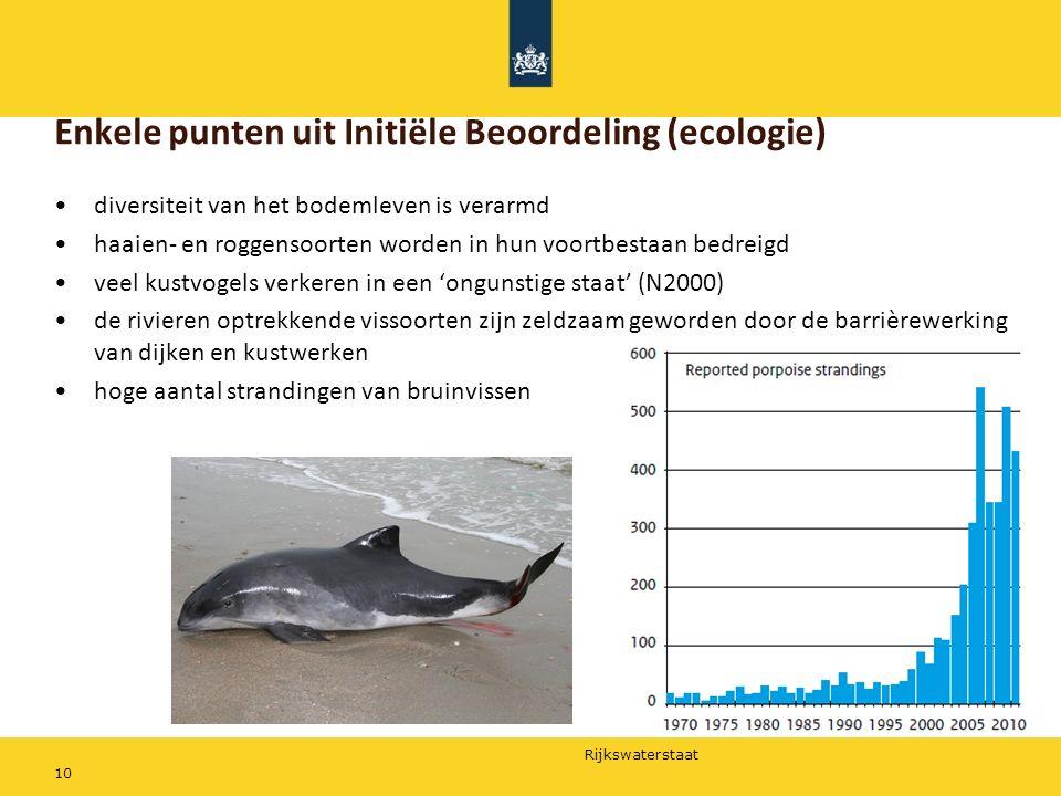 Rijkswaterstaat 10 Enkele punten uit Initiële Beoordeling (ecologie) diversiteit van het bodemleven is verarmd haaien- en roggensoorten worden in hun