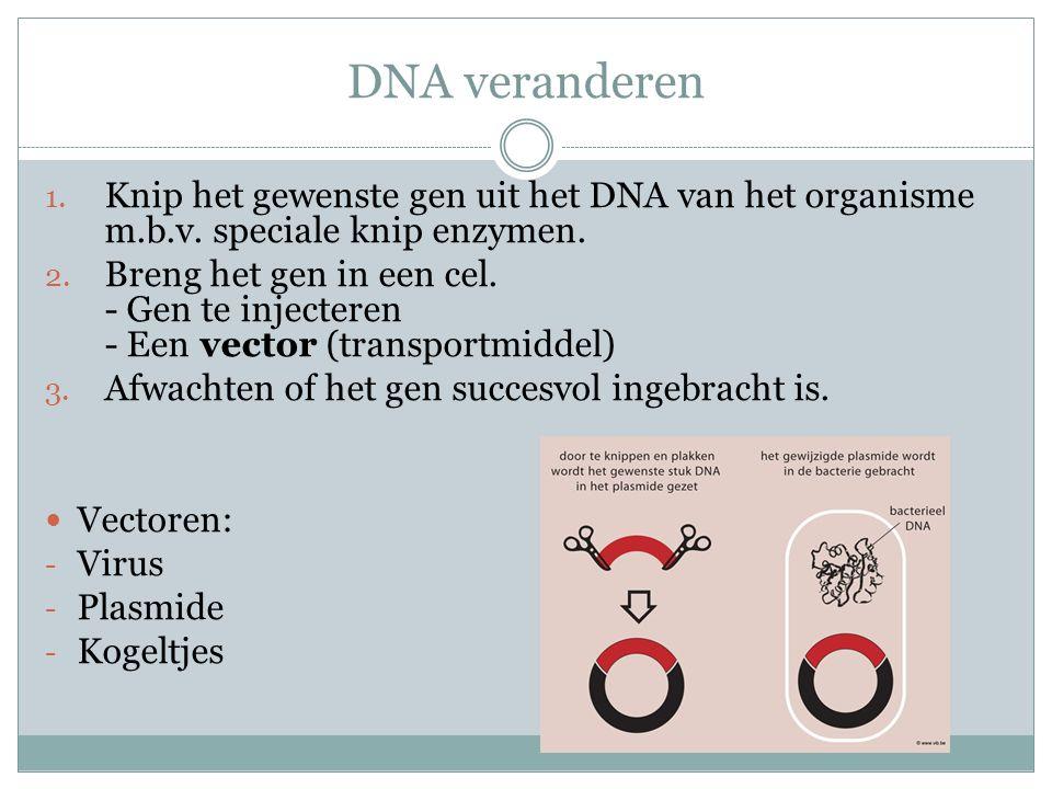 DNA veranderen 1. Knip het gewenste gen uit het DNA van het organisme m.b.v. speciale knip enzymen. 2. Breng het gen in een cel. - Gen te injecteren -