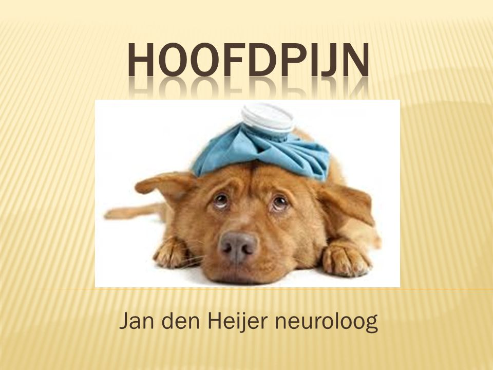 Jan den Heijer neuroloog