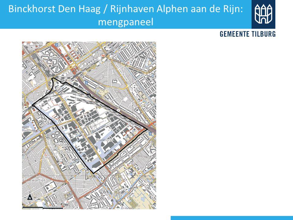 Binckhorst Den Haag / Rijnhaven Alphen aan de Rijn: mengpaneel