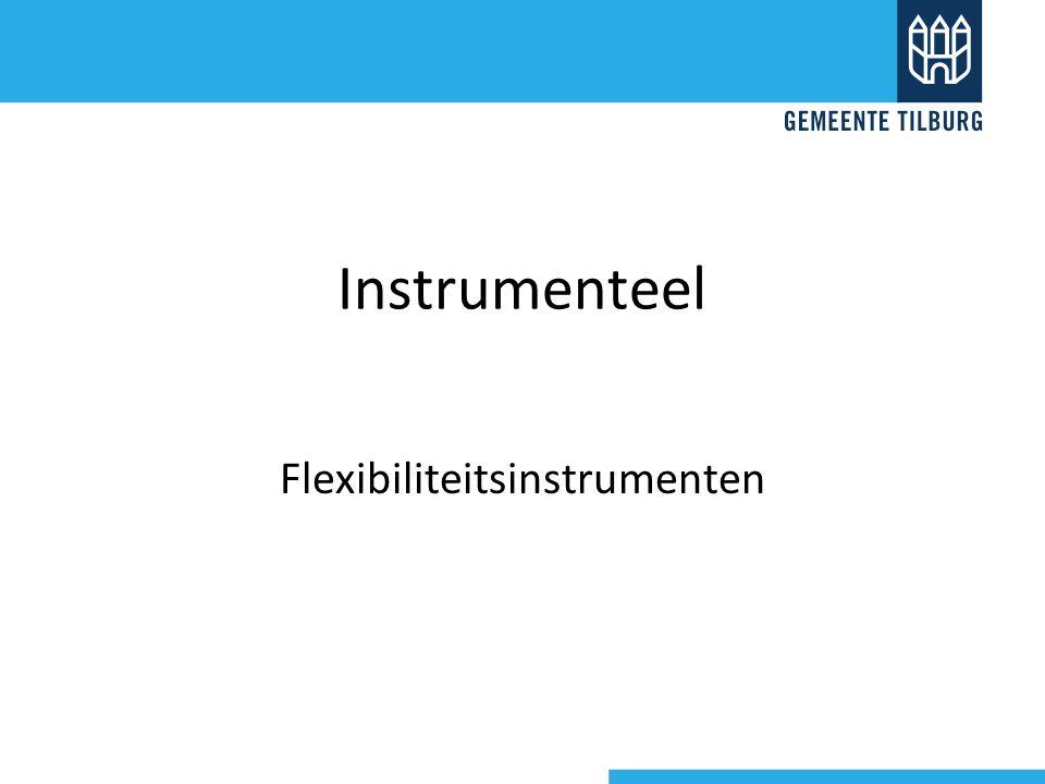 Instrumenteel Flexibiliteitsinstrumenten