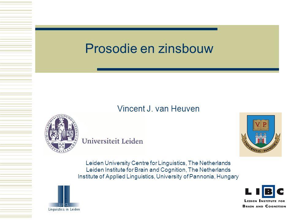 Prosodie en zinsbouw Vincent J.