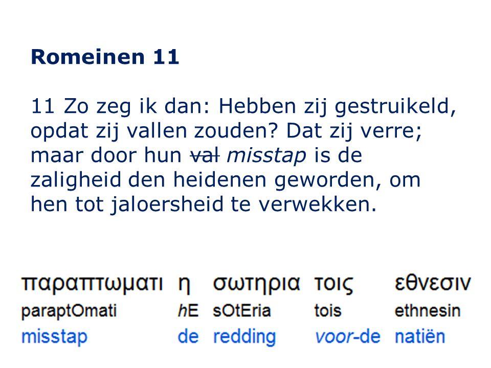Romeinen 11 11 Zo zeg ik dan: Hebben zij gestruikeld, opdat zij vallen zouden.