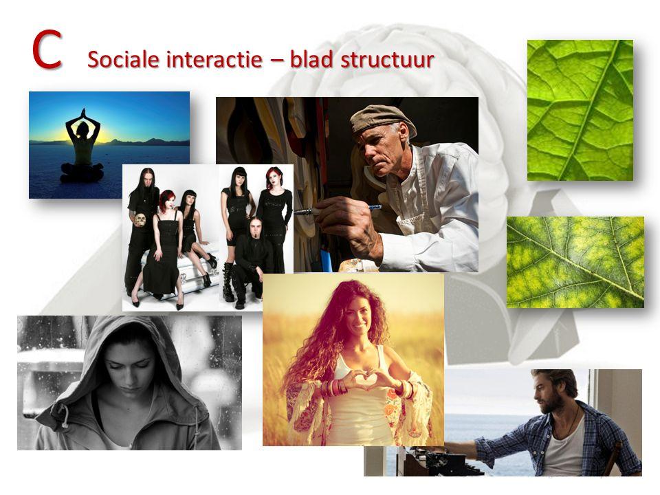 C Sociale interactie – blad structuur