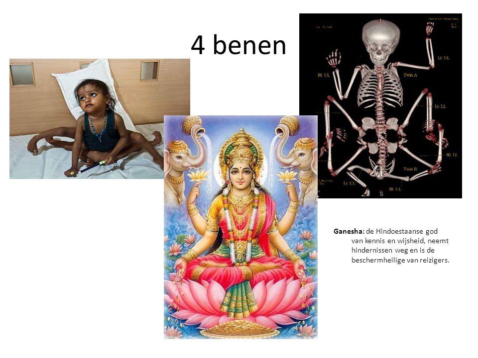 4 benen Ganesha: de Hindoestaanse god van kennis en wijsheid, neemt hindernissen weg en is de beschermheilige van reizigers.
