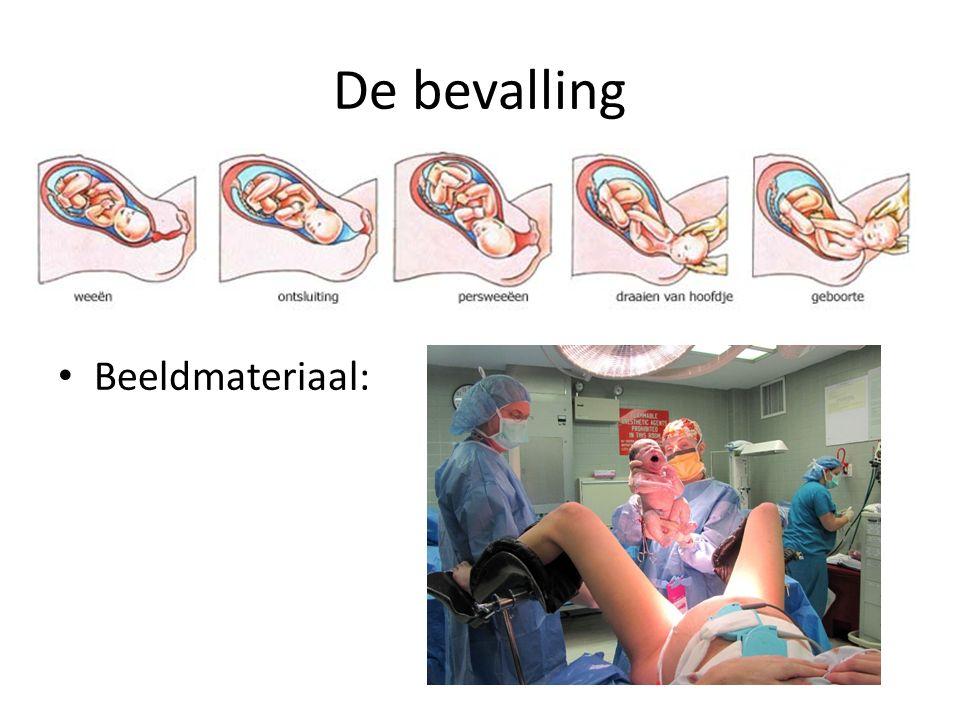 De bevalling Beeldmateriaal: