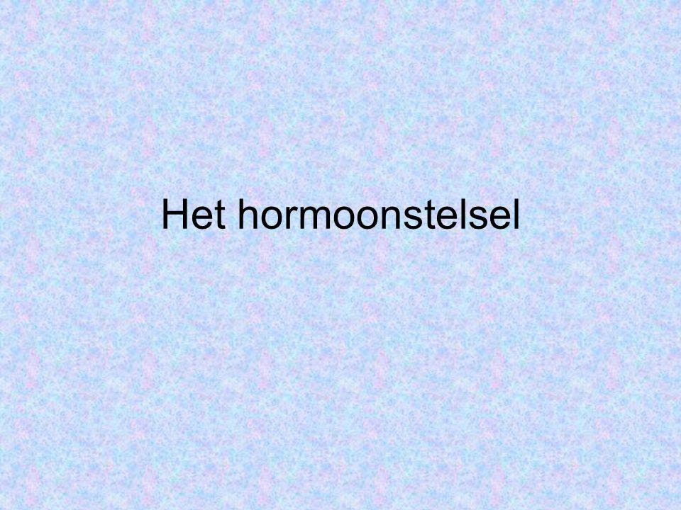 Het hormoonstelsel