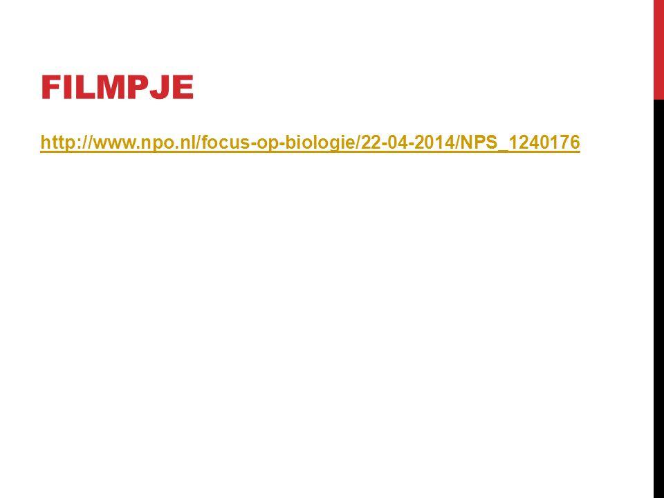 FILMPJE http://www.npo.nl/focus-op-biologie/22-04-2014/NPS_1240176