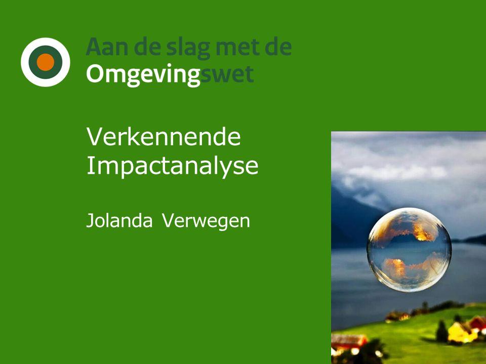 Verkennende Impactanalyse Jolanda Verwegen