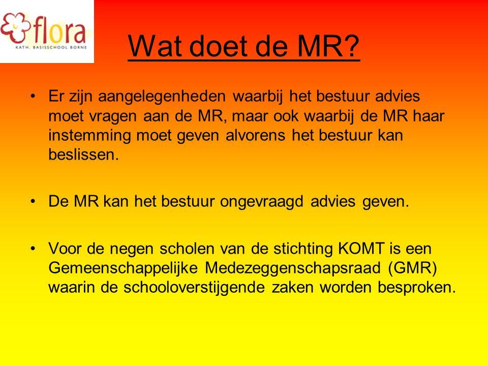 Wat doet de MR.