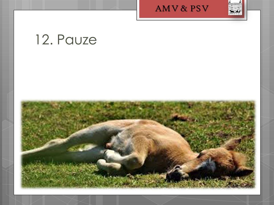 12. Pauze AMV & PSV