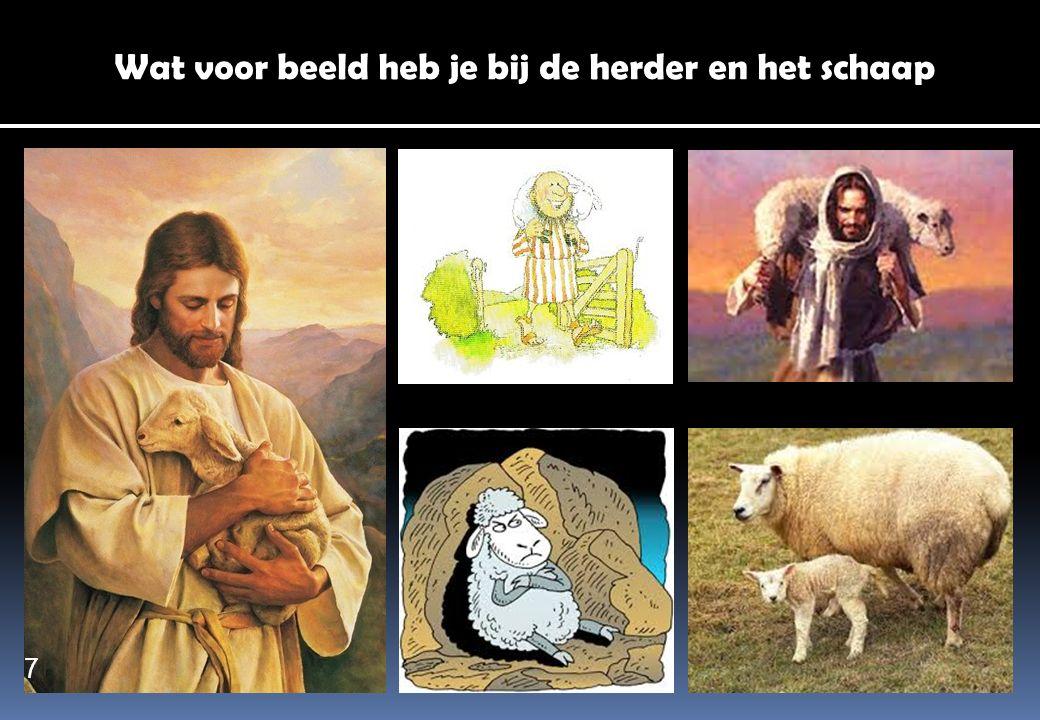 Wat voor beeld heb je bij de herder en het schaap 7