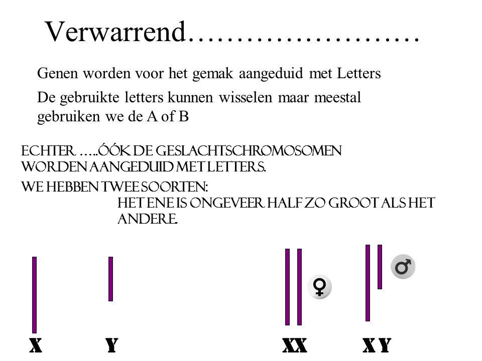 Lichaamscel van de mens: 22 paar gewone chromosomen 1 paar geslachtschromosomen Celdeling: gewone celdeling; copie reductie deling: chromosoomparen gesplitst geslachtscel Geslachtscel van de mens: 22 gewone chromosomen 1 geslachtschromosoom