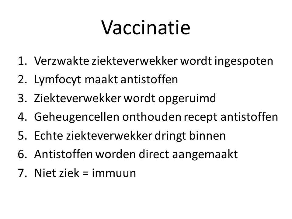 Vaccinatie 1.Verzwakte ziekteverwekker wordt ingespoten 2.Lymfocyt maakt antistoffen 3.Ziekteverwekker wordt opgeruimd 4.Geheugencellen onthouden rece