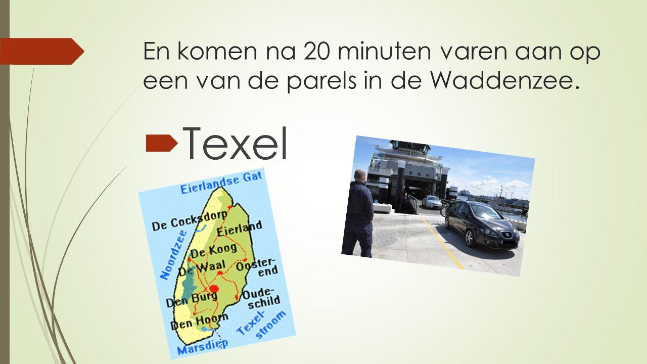 En komen na 20 minuten varen aan op een van de parels in de Waddenzee.  Texel