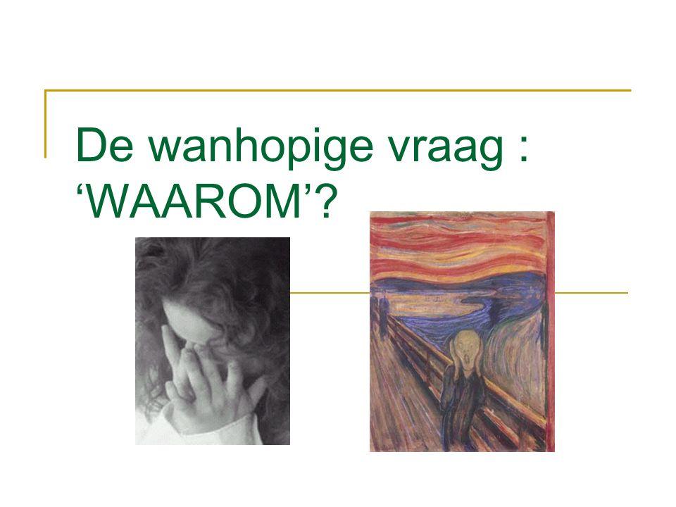 De wanhopige vraag : 'WAAROM'