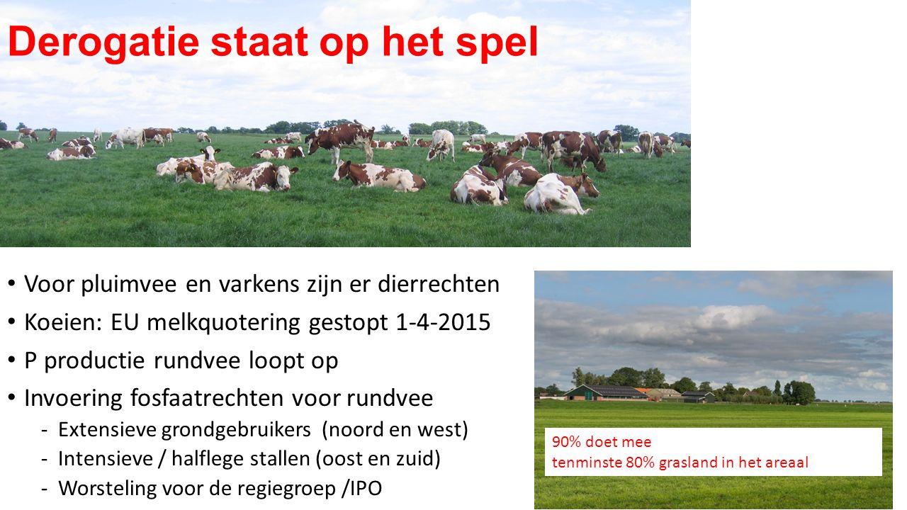 Voor pluimvee en varkens zijn er dierrechten Koeien: EU melkquotering gestopt 1-4-2015 P productie rundvee loopt op Invoering fosfaatrechten voor rund